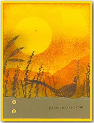 My SS card 8-11-2-09
