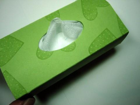 Tissue 4