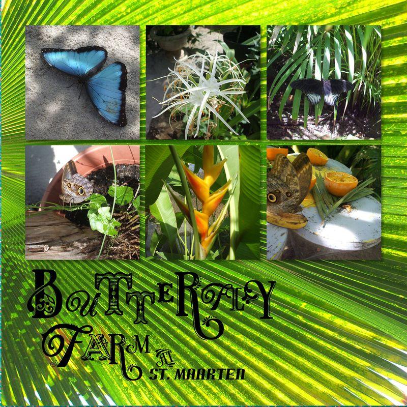 South Caribbean-031