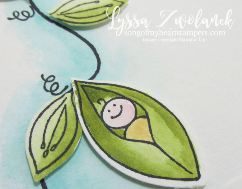 DIY new baby card Sweet Pea Friends and Flowers from Stampin Up www.songofmyheartstampers.com