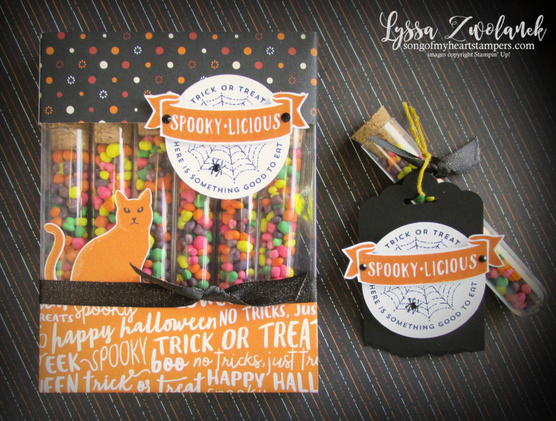 Halloween treat tubes candy holders acetate card boxes stampin up Lyssa Nerds M&M cat punch