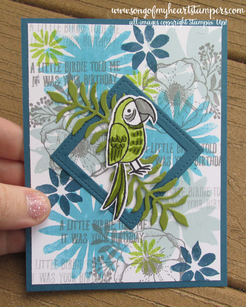 Bird banter stamp set birdies cockatoo parrot peacock parakeet early belated birthday card