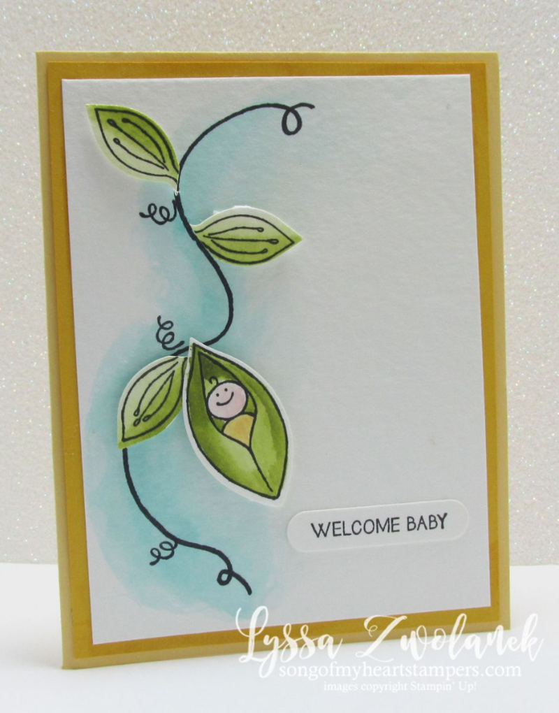 Sweet Pea Friends & Flowers New Baby Card DIY #stampinup www.songofmyheartstampers.com