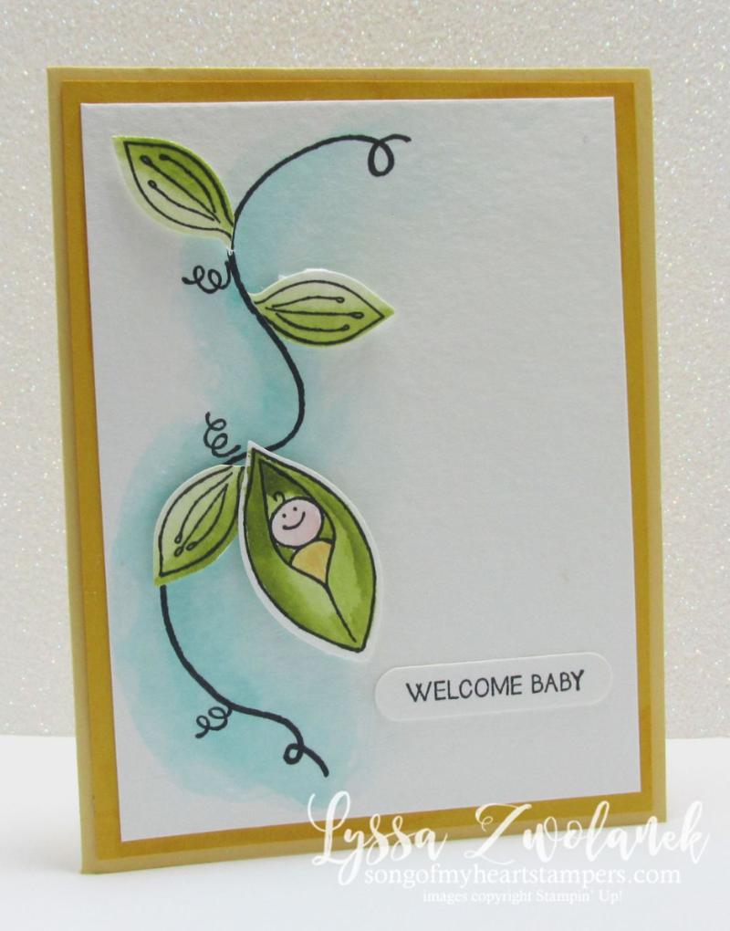 Sweet Pea Friends & Flowers New Baby Card DIY #stampinup www.songofmyheartstampers.com