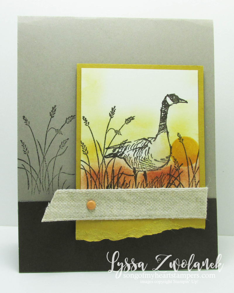 Wetlands masculine card canada goose canadian geese nature natural guy Stampin Up Lyssa