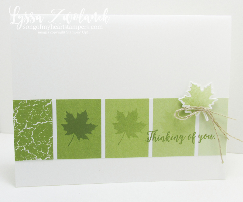 Color Theory Old Olive ombre paint swatch autumn leaf masculine cards guy Stampin Up Lyssa