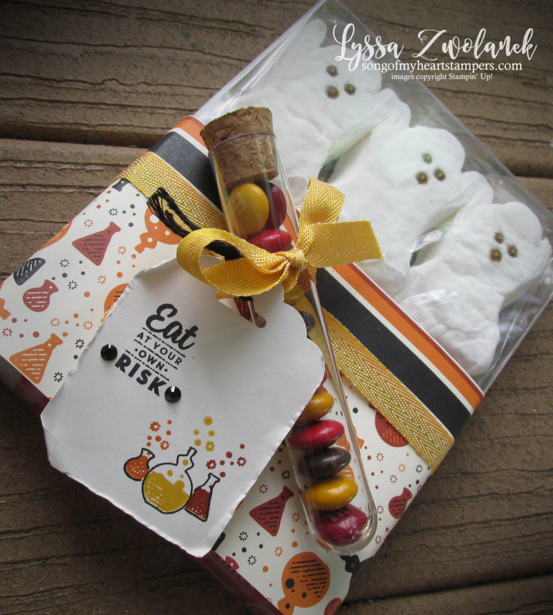 Halloween peeps gift holders packaging boxes envelopes stampin up ghost Spooky Night test tubes cocoa