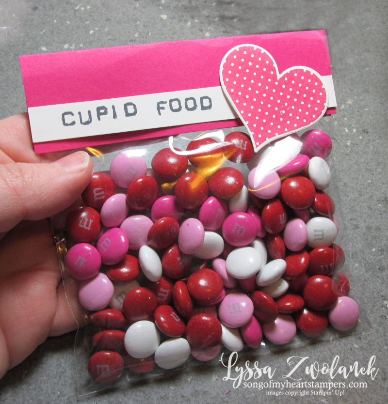 Clear envelope medium translucent Stampin Up treat holders candy cupid food valentine