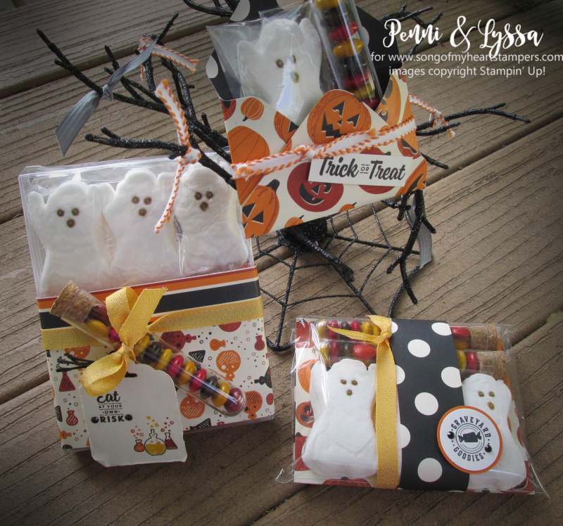 Halloween peeps gift holders packaging boxes envelopes stampin up Spooky Night test tubes cocoa