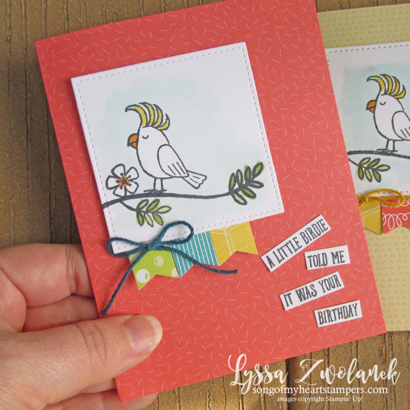 Bird banter retiring list stampin up tutti frutti cards envelopes SAB cockatoo parrot toucan stamp