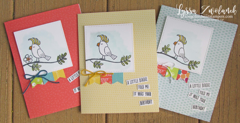 Bird banter retiring list stampin up tutti frutti cards envelopes SAB cockatoo parrot toucan stamps