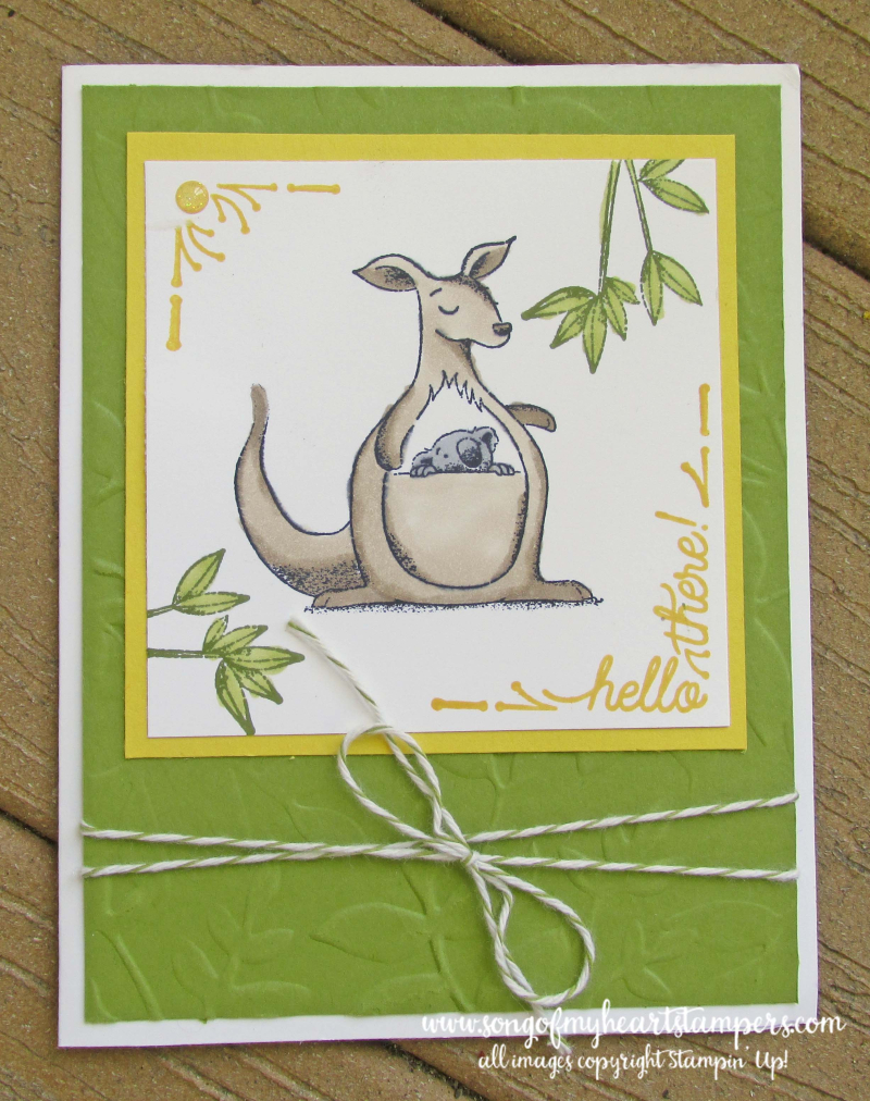 Animal Outing giraffe kangaroo rhino koala stamps stampin up Lyssa