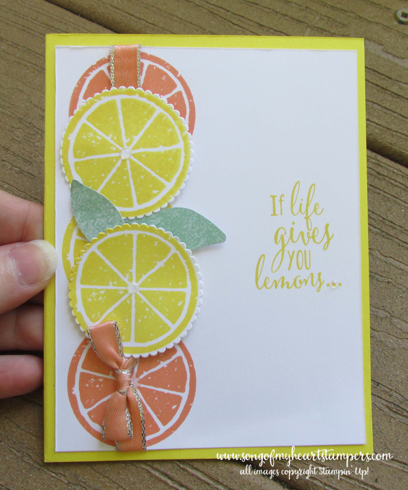 Lemon zest lime grapefruit orange stamp punch bundle Lyssa stampin Up shop