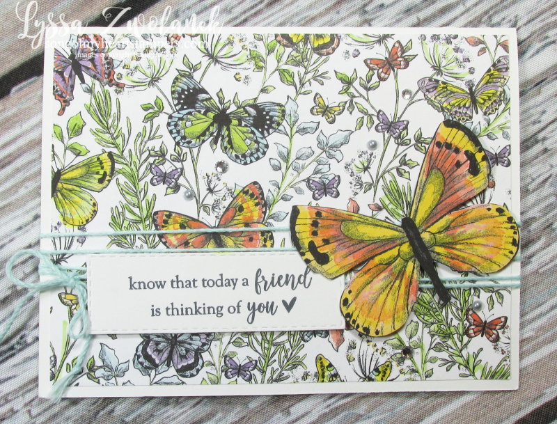 Butterfly DSP gala paper 12x12 scrapbooking SAB Stampin up butterflies layouts saleabration Lyssa