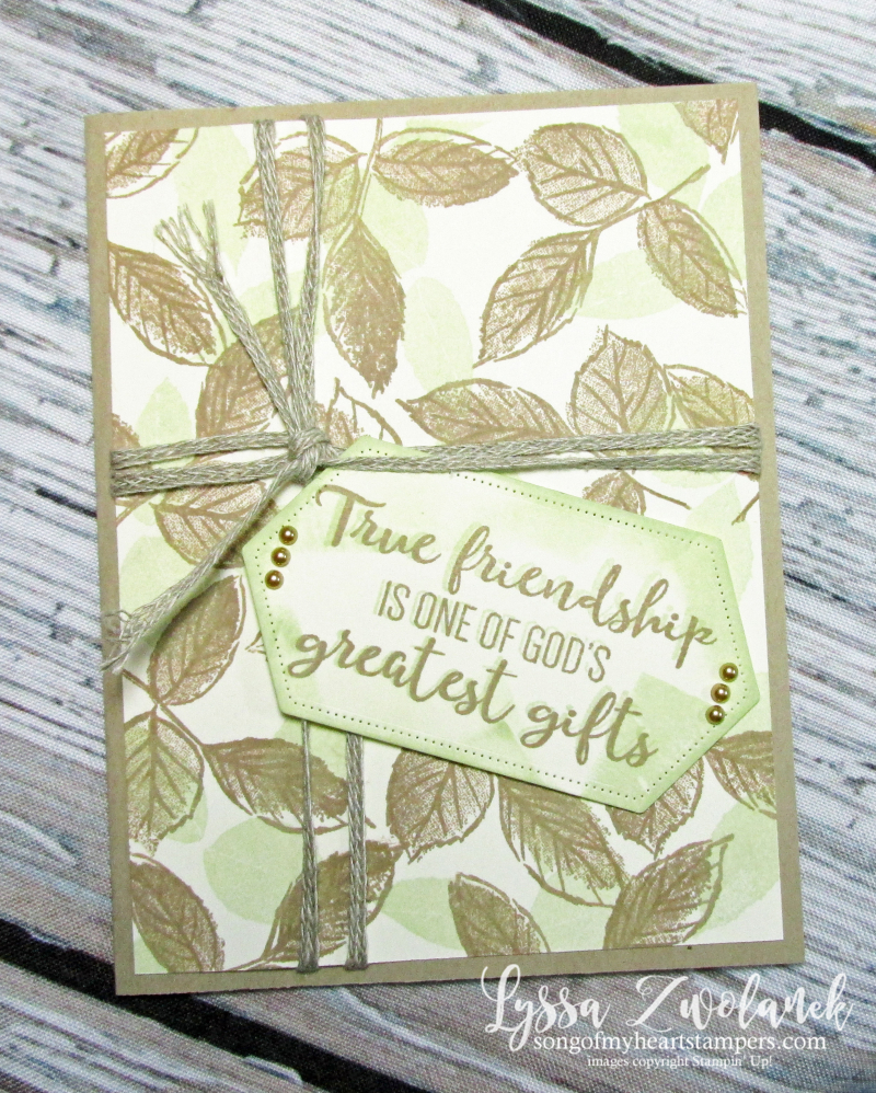 True friendship wild rose Stampin Up masculine cards stamps backgrounds techniques paper strips