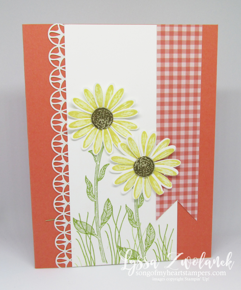 Daisy Lane medium daisies punch delight Stampin Up lace stamp DIY crafting