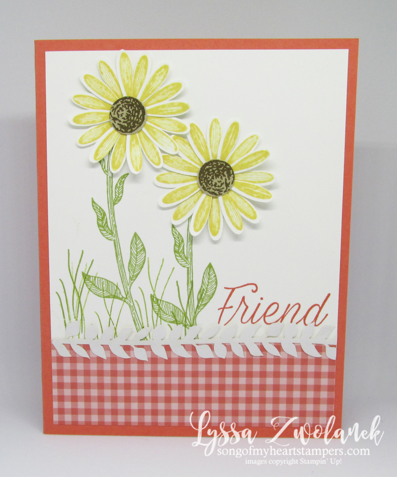 Daisy Lane medium daisies punch delight Stampin Up vine lace stamp DIY crafting