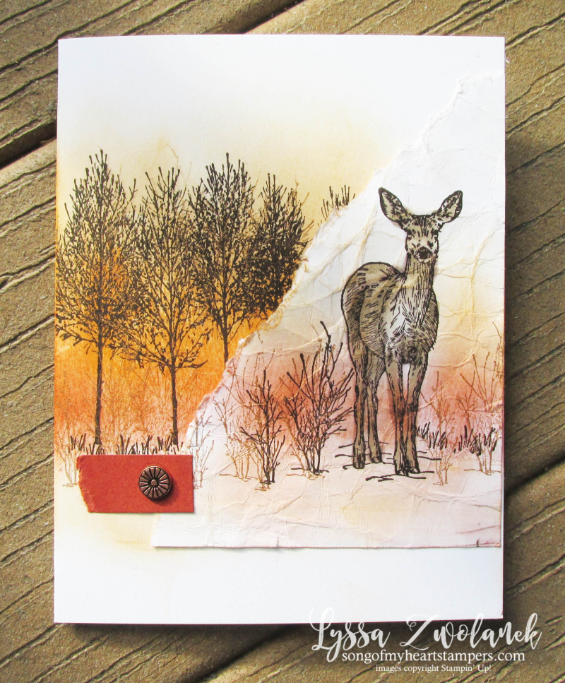 Natures beauty deer woods winter autumn masculine birthday cards stampin up ideas