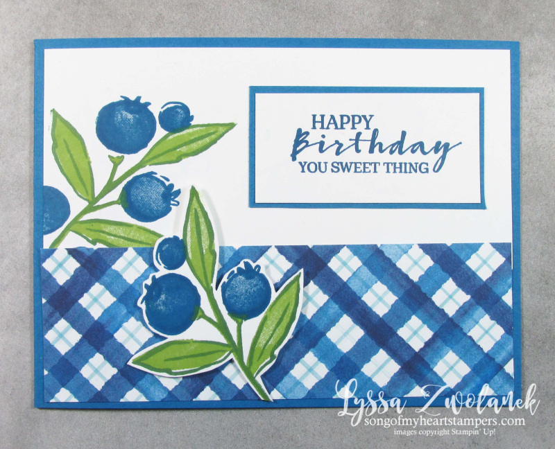 Berry blessings card fancy fold Saleabration Stampin Up delightful strawberries blueberries punch plaid stamps