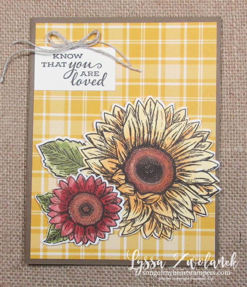 Celebrate Sunflowers Plaid Tidings papers Stampin Up sale 12x12 6x6 cardmaking patterned