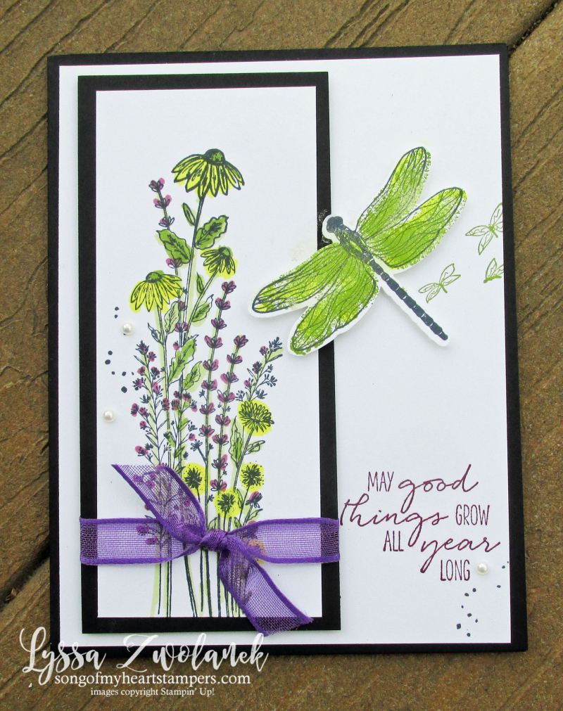 Dragonfly Garden black white apple green Stampin Up Lyssa layout sketches tutorials cards rubber stamps