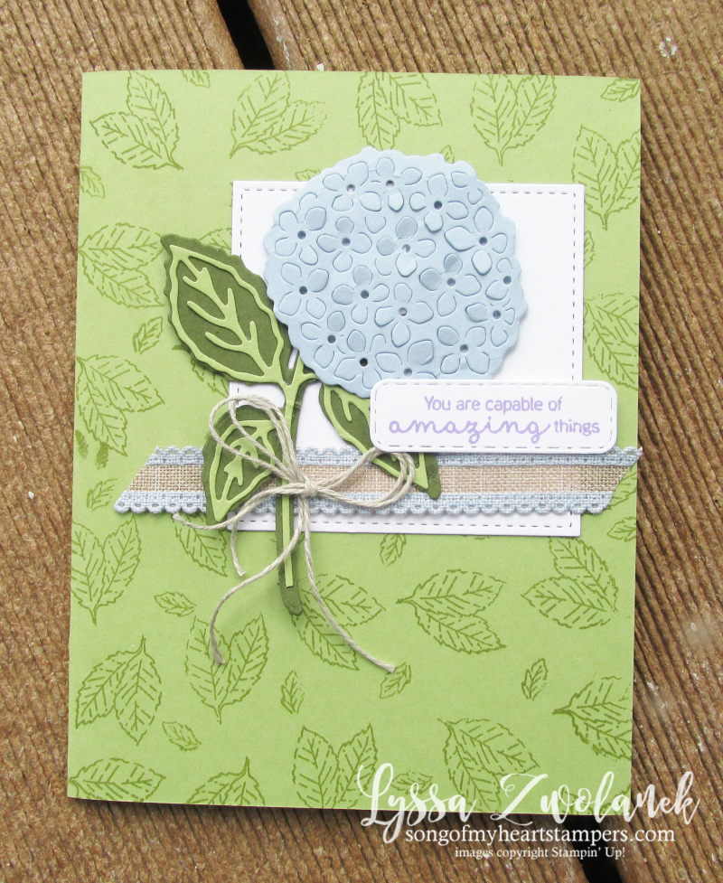 Hydrangea Haven Hill Stampin Up Lyssa class suite sampler subscription 12x12 paper DIY cardsjpg