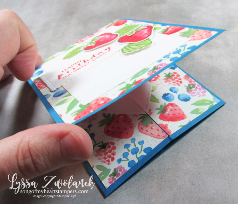 Berry blessings card fancy fold Saleabration Stampin Up delightful strawberries blueberries punch raspberry stamps