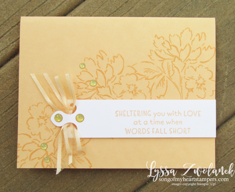 Pale Papaya Stampin Up blends markers cardstock papers ribbon supplies scissors adhesive