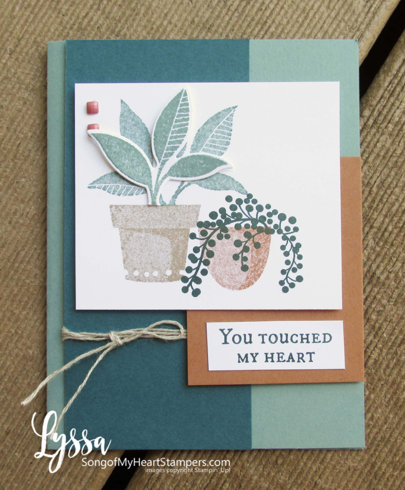 Bloom where planted hanging basket Stampin Up Lyssa houseplants succulent rubber stamp