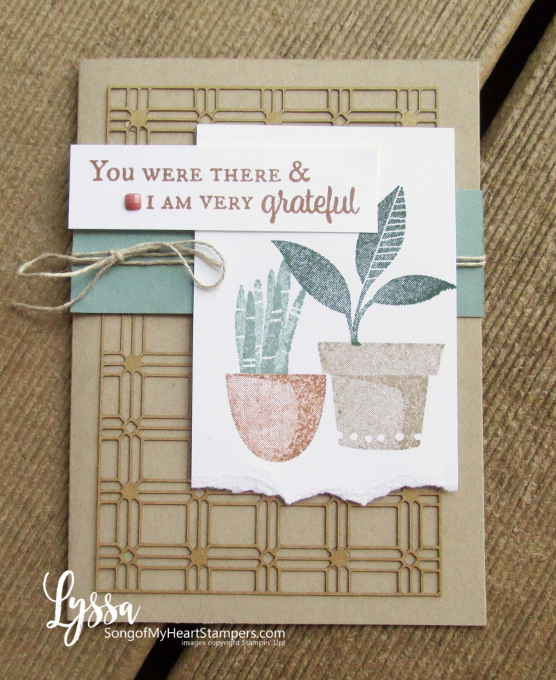 Bloom where planted hanging basket Stampin Up Lyssa houseplant succulents stamps