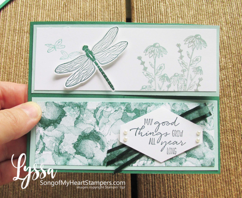 Dragonfly Garden fancy fold Lyssa Stampin Up classes tutorial fun rubber stamping