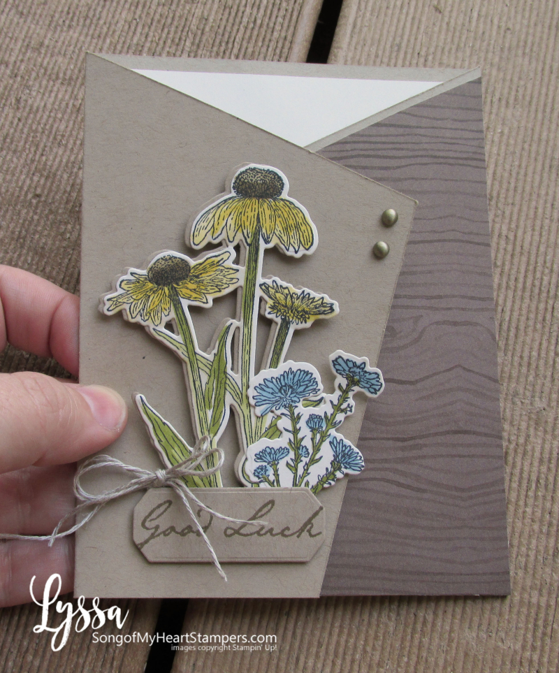 COTM Lyssa Natures Harvest rubber stamp coneflower Stampin Up fall fancy fold meadow