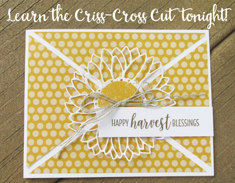 Criss cross cut technique fold background Stampin Up 12x12 patterned paper Lyssa