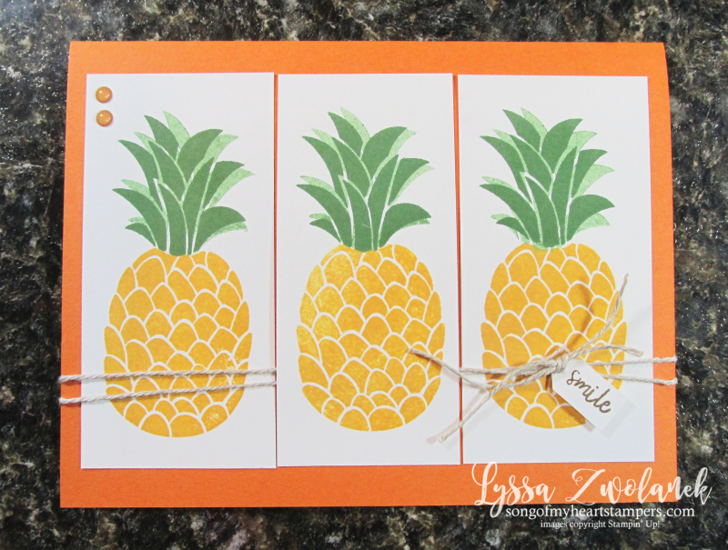 Cute fruit stamp set Stampin Up Lyssa tropical basket kiwi pineapple welcome banana beginner rubber stamps