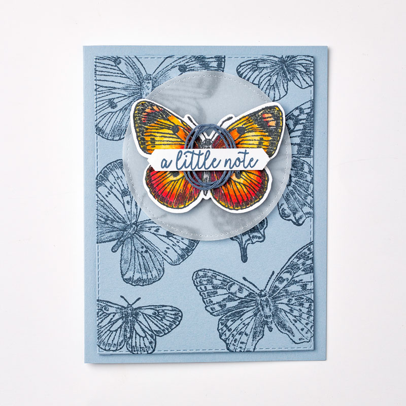 Butterfly Brilliance-Bundle_Individual-Sample_3