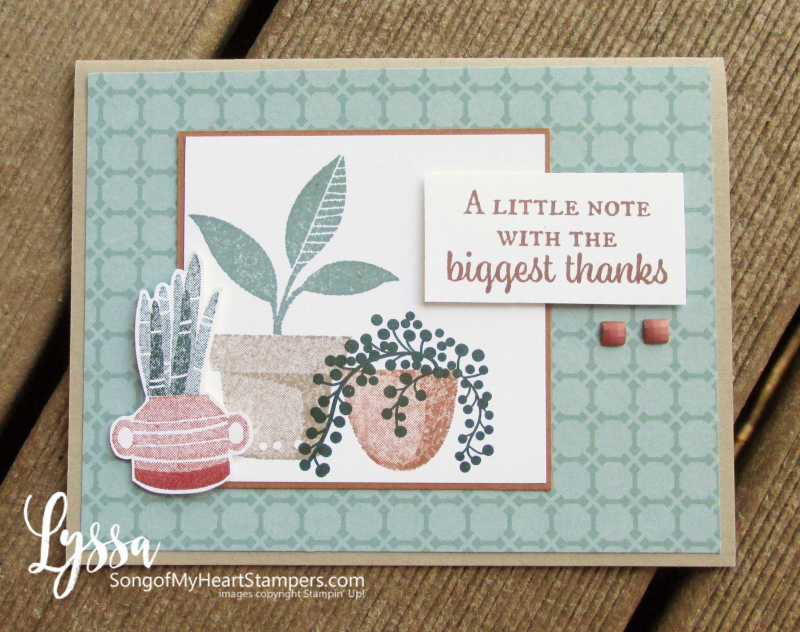 Bloom where planted hanging basket Stampin Up Lyssa houseplant succulents rubber stamp