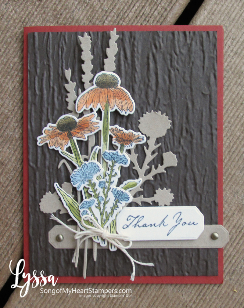 COTM Lyssa Natures Harvest rubber stamp coneflower Stampin Up fall meadow
