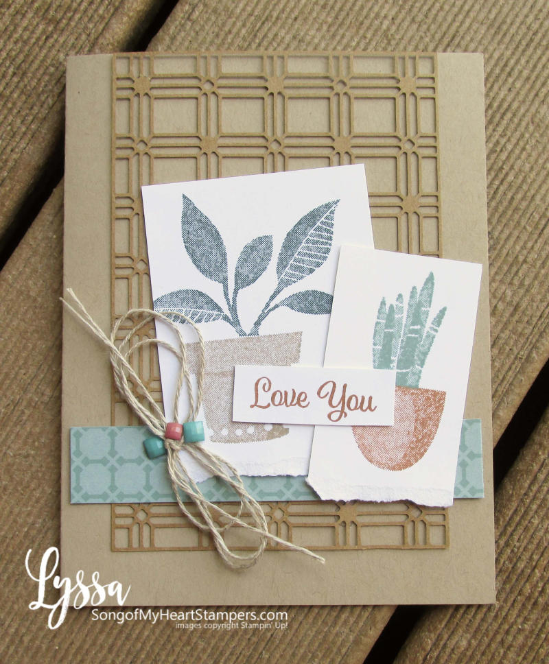Bloom where planted hanging basket Stampin Up Lyssa houseplant succulent stamp