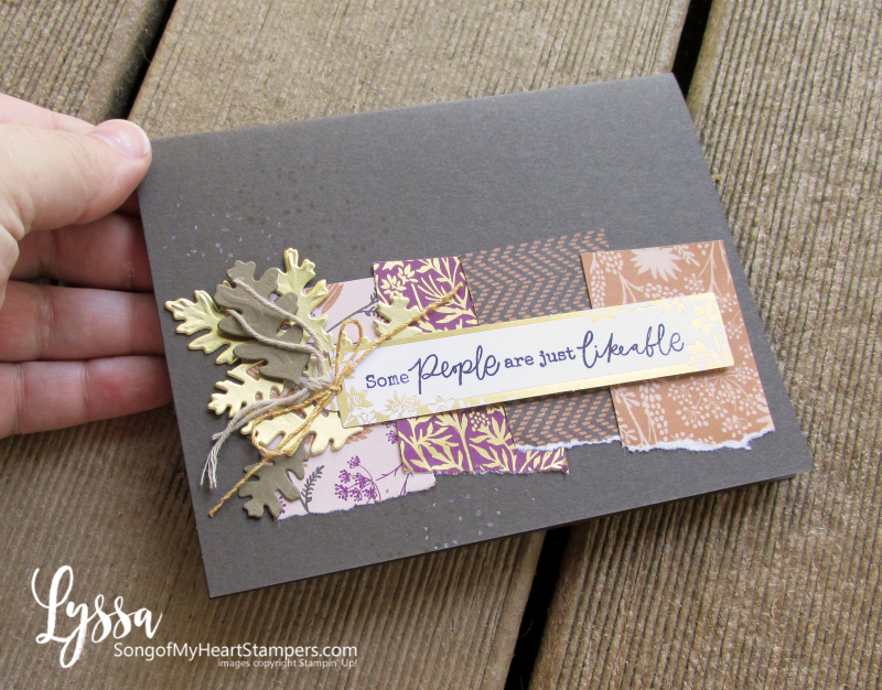Beauty Blackberry Meadow Stampin Up supplies cards papers Lyssa tutorials ideas